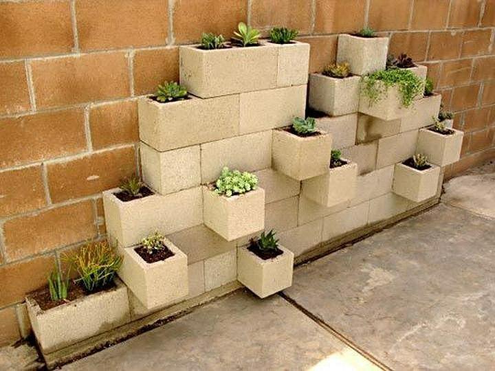 boltari ghivece flori plante