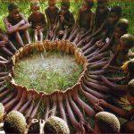 Puterea grupului. UBUNTU