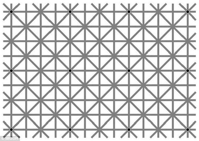 Testul care a înnebunit internauţii! Câte puncte negre vezi în imagine. NIMENI NU a REUŞIT să dea răspunsul CORECT!